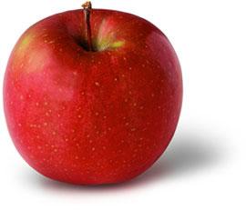 ผัก-ผลไม้, สุขภาพ, ผู้หญิง, อาหาร, ร่างกาย, วิตามิน, แร่ธาตุสวย, น่ารัก, ดูดี